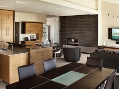 High end residential kitchen